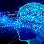 認知・認知機能とは何か